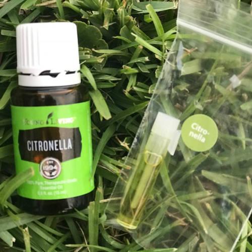 Essential Oil Citronella Stress Away